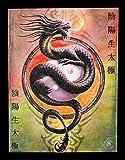 Kleine Leinwand - Yin Yang Protector by Anne Stokes - Drache Bild Fantasy