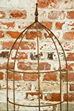 Rankgitter, Rankhilfe, Rankgerüst, Rost, Höhe: 150 cm, Volleisen