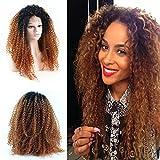 Eseewigs, parrucca afro riccia con radici nere e lunghezze ombrè, fibre ricce sintetiche resistenti al calore, parrucca con pizzo frontale, riccio naturale ombrè intenso per donne