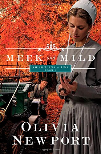 Meek And Mild Amish Turns Of Time