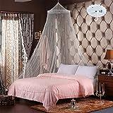 RETON 2 Pcs Jumbo Mosquito Net elegante cama de encaje con dos ganchos, Queen Size, Blanco