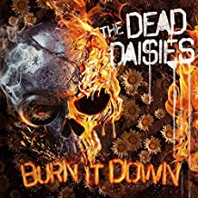 Burn It Down (CD Digipak + Poster)