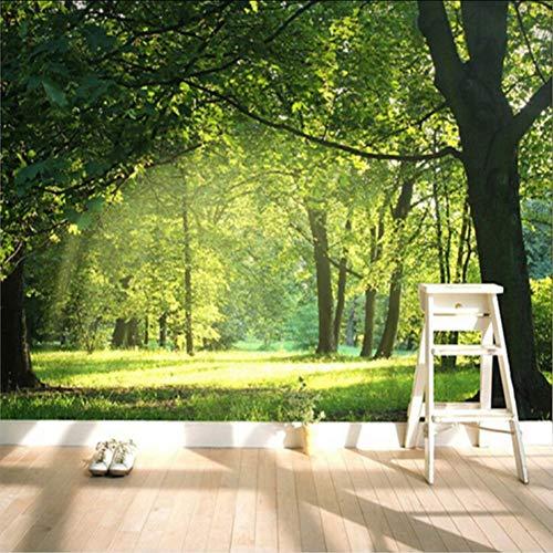Ponana Benutzerdefinierte Wandbilder 3D Ländliche Natürliche Landschaft Fototapeten Feuchtigkeitsschutz Classic Home Decor Wall Papers-350X250Cm -