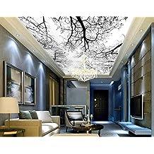 suchergebnis auf f r fototapete decke. Black Bedroom Furniture Sets. Home Design Ideas