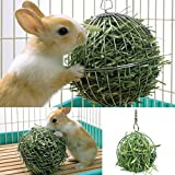Stainless Steel Feed Hanging Ball Rabbit Pet Treat Dispenser Toy 8cm