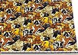 Kühe Schwarz Weiß Braun 100% Cotton Hochwertig Fabric