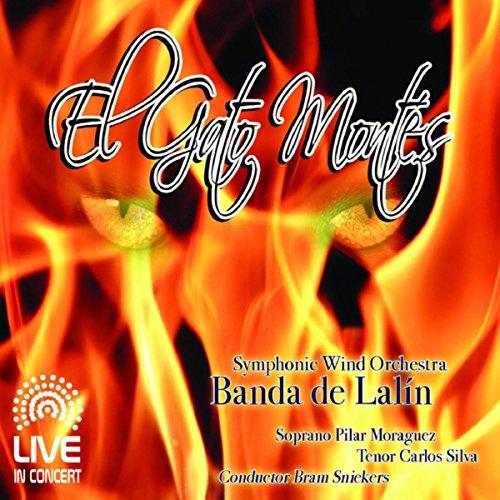 El gato montés: Highlights from the Opera de Banda de Lalín ...