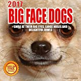 Best Wall Calendars 2017 Big Face Dogs Wall Calendar with 210 Reminder Stickers, 12-Inch x 12-Inch