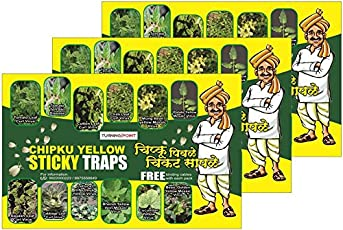 Insect Killer-3 Pack CHIPKU,Fly Trap/Insect Catcher/Insect Trap for Whiteflies,Plant Hopper Yellow Sticky Traps (Pack of 10 * 3 Pieces)