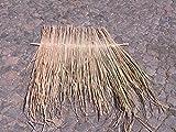 5 x Palmendach 75 cm Reetdach Schindel Palme Bambus Palmenblätter Palmenschirm Schindeln