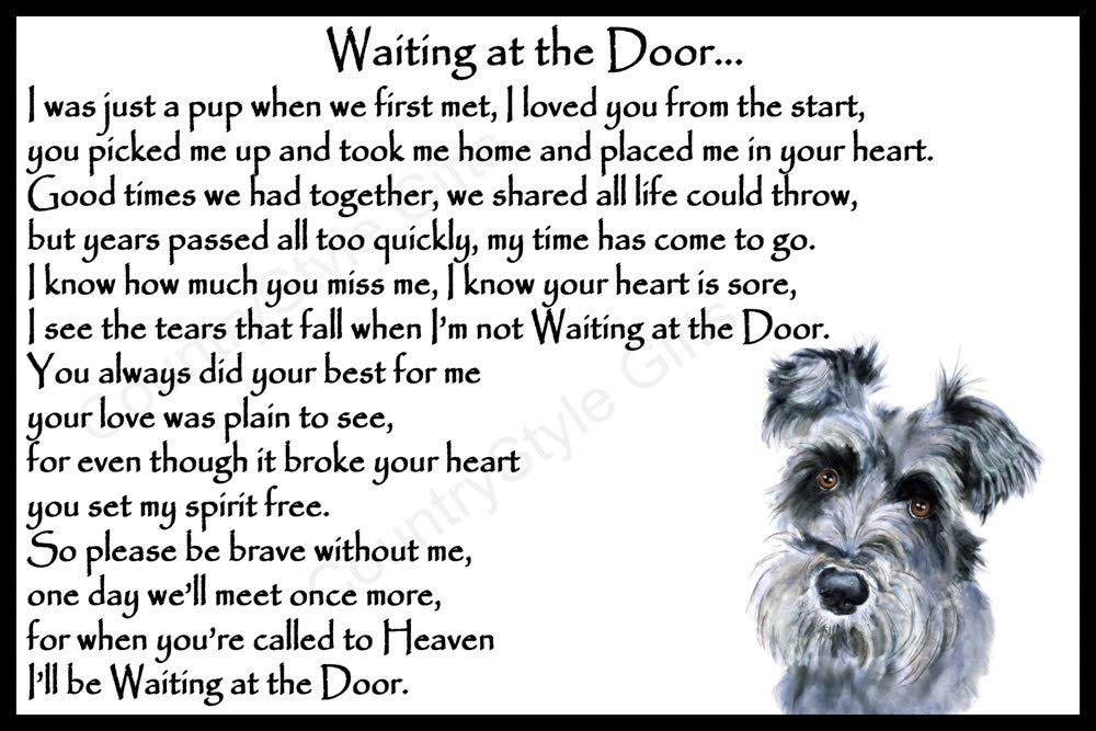 Schnauzer Dog Pet Memorial Rainbow Bridge Gift with Verse – Waiting at The Door