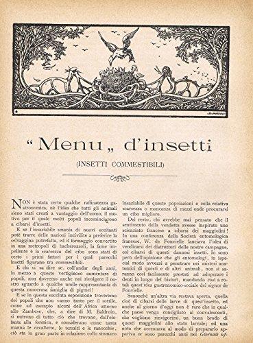 Alessandro Canestrini - MENU' D'INSETTI (INSETTI COMMESTIBILI)