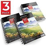 ARTEZA 3 blocs de papier aquarelle 300 g/m2 | Chaque carnet aquarelle 3,14 x21,6 cm | 3 x 90 feuilles | Papier blanc pressé à froid | Pour peinture humide, sèche et techniques mixtes