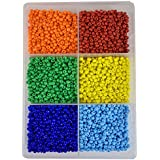 ESHOPPEE Glass Seed Beads for Art and Craft Making DIY Kit, 300g, 6/0, 4mm (Multicolour, ES3806)