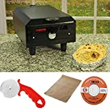 Berg Mini Electric Tandoor