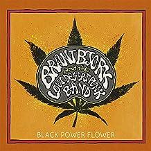 Black Power Flower [VINYL]