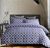 HD-Dreamer Bettwäsche 3 Teilig 100% Polyester Mikrofaser Mit Reißverschluss,1*Bettbezug 2* Kissenbezüge, Doppelt Voller Königin König Größe,Zeitgenössische Geometrie,A,Full