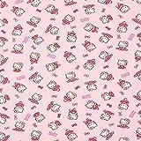 Fabulous Fabrics Jersey Hello Kitty Ballett – rosa — Meterware ab 0,5m — zum Nähen von Kinderbekleidung und Nachtwäsche