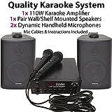 Karaoke System/Kit-2x Lautsprecher & 2x Mikrofone TV Verstärker/Party Musik Player–Perfekt für Kinder-Partys und Diskotheken–Karaoke Maschine