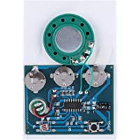 30S USB Re-recordable Music Sound Voice Recording Module Device 0.5W with Button Cells for DIY Toys Audio Gifts (photosensitive control)