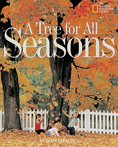 Tree for All Seasons (Picture the Seasons)