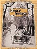 Wee Blue Coo Prints ADVERTISEMENT HARLEY DAVIDSON 1925 MOTORCYCLE BIKE SIDECAR 30X40 CMS FINE ART PRINT ART POSTER Werbung Fahrrad BEIWAGEN Kunstdruck
