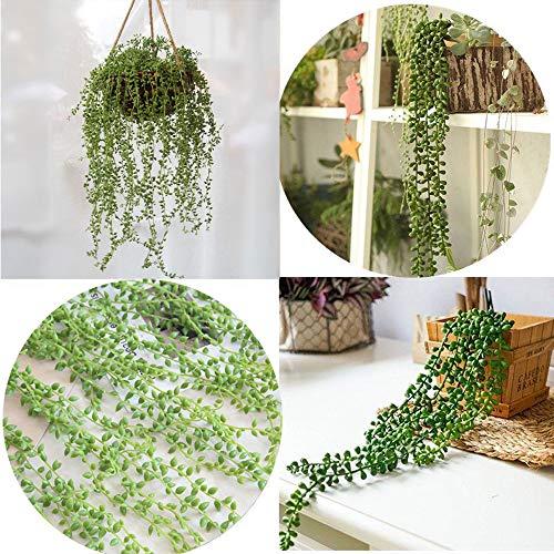 happy event Unechte Blumen | 2Pcs Hängende Wand Kunststoff künstliche Sukkulenten Perlen | Grüne Reben Blume | Liebhaber Tränen -