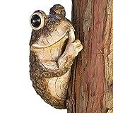 Bit e pezzi – Rana Sbirciona Albero Fai Silenzio – Scultura a forma di animale abbraccia alberi in poliresina durevole – Statua decorativa da esterno per prato e giardino
