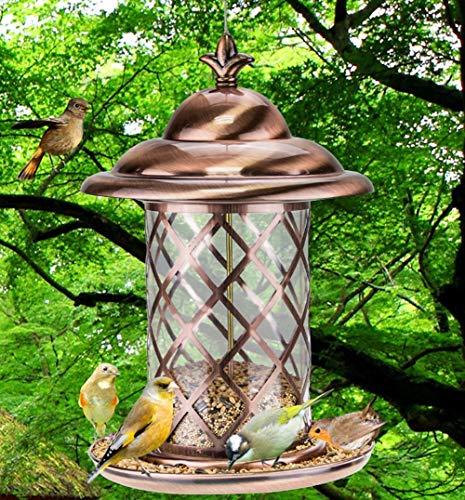 RZiioo Panorama-Vogelhäuschen, hängende Wildvogelhäuschen im Freien, Laternen-Vogelhäuschen - Freien Hängenden Im Laternen
