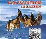 Wolfsspuren in Bayern: Kulturgeschichte eines sagenhaften Tieres