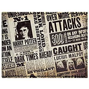 Warner Bros Harry Potter Boulevardblatt Braun Portemonnaie Geldbörse