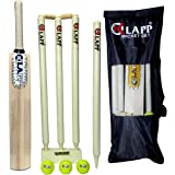 Klapp Speed Popular Willow Cricket Kit with Three Ball, Four Wicket for Boys and Youth