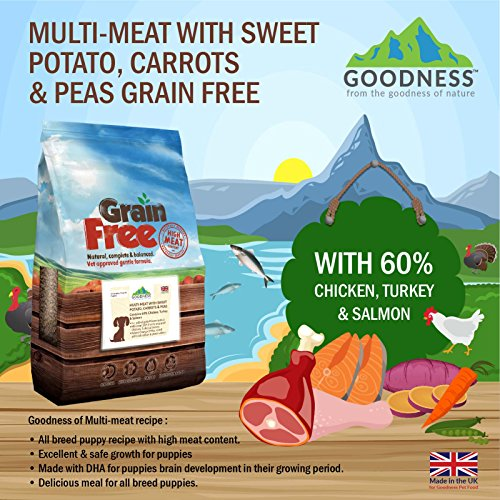 Grain Free Dog Food Without Sweet Potato And Peas