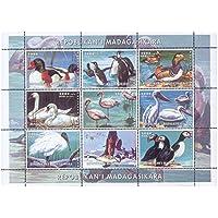 Gli uccelli acquatici del foglio mondo menta timbro con varie immagini, grande per i collezionisti di francobolli come questo è argomento più popolare tra gli appassionati di filatelia - Madagascar / 1999/9 francobolli - Francobolli Uccelli