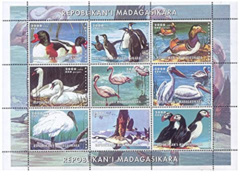 Water birds of the world mint stamp sheet featuring various images, great for stamp collectors as this is most popular topic among philatelists – Madagascar / 1999 / 9 stamps