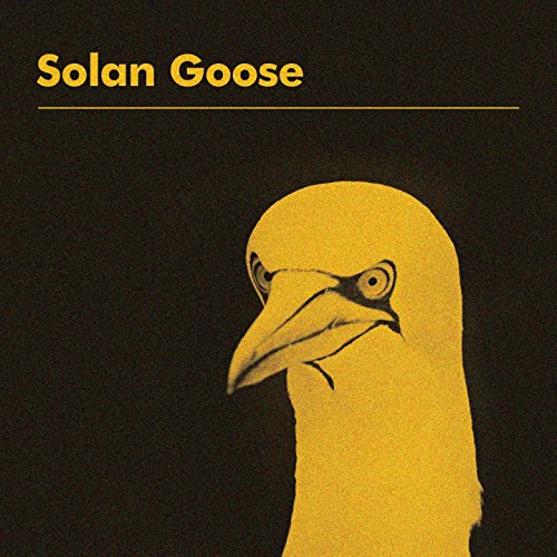 Image result for erland cooper solan goose