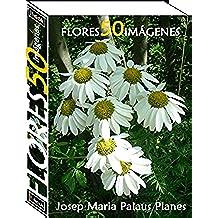 Flores (50 imágenes)