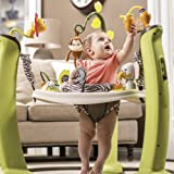Evenflo ExerSaucer Jump and Learn, EX8333