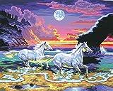 L'Art et la Manière Peinture au numéro motif Chevaux au crépuscule 30 x 40 cm Couleurs Assorties