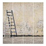 Bilderwelten Schiebegardinen Blank Aufhängung: Ohne Aufhängung 250x240cm 4 Flächenvorhänge