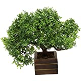 Random Artificial Potted Bonsai Tree with Green Leaves