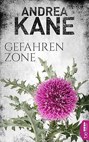 Gefahrenzone (Romantic Suspense der Bestseller-Autorin Andrea Kane 5) -