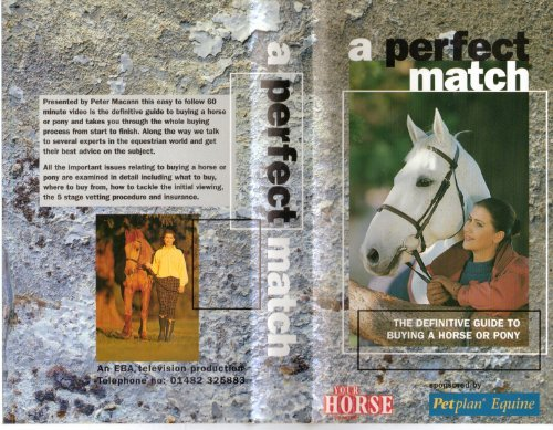 a-perfect-match-a-definitive-guide-to-buying-a-horse-or-pony-vhs