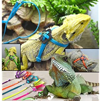 Adjustable Reptile Lizard Harness Leash Adjustable Multicolor Light Soft Fashion (Blue) 3