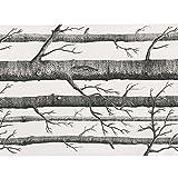 Soledi  fond de forêt en Papier peint texturé Tree Rouleau décor de chambre d'hôtel