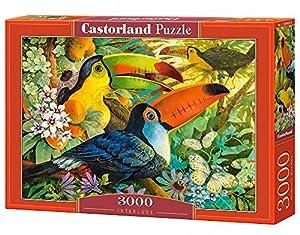 Castorland Interlude 3000 pcs Puzzle - Rompecabezas (Puzzle Rompecabezas, Flora & Fauna, Niños y Adultos, Niño/niña, 9 año(s), Interior)