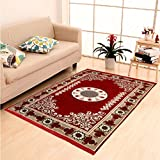"DAILZ Ethnic Velvet Touch Abstract Chenille Carpet - 55""x80"", Maroon"