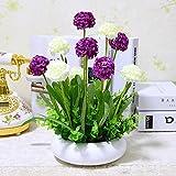 XHOPOS HOME Flores artificiales plantar plantas en macetas lavanda Púrpura Blanco bolas decorativas flores falsos para la Casa y Jardín decoración del partido