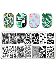 Born Pretty Stamping Template Summer Fruit Leaf Crane Rectangle Nail Art Image Plate BP-L076