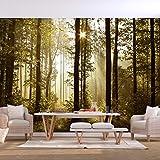 decomonkey | Fototapete Wald 300x210 cm | Tapete | Wandbild | Bild | Fototapeten | Tapeten | Wandtapete | Wanddeko | Landschaft Baum Natur Sonne